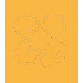 icono abeja y flor2